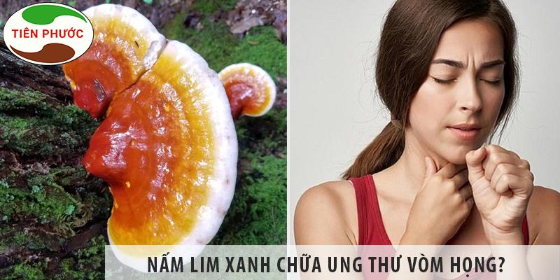Nấm Lim Xanh Chữa Ung Thư Vòm Họng được Không?