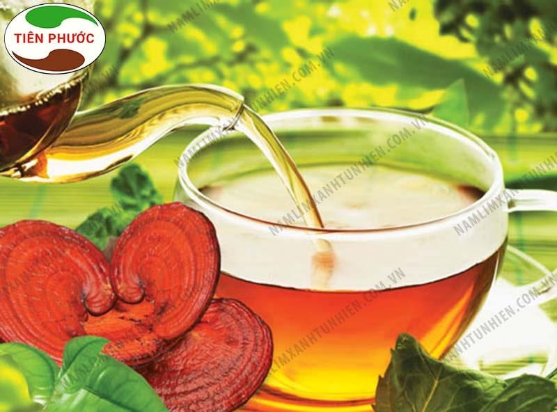 Hãm trà nấm lim xanh để uống
