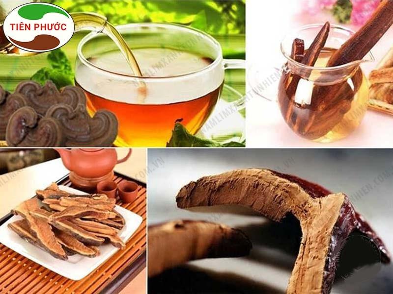 Sử dụng nấm lim xanh hãm trà