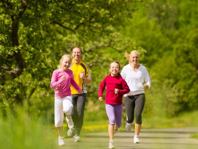 Hình 2: Nấm lim xanh giúp tăng cường sức khỏe cho gia đình bạn