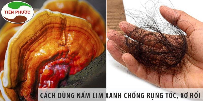 Cách Sử Dụng Nấm Lim Xanh Chống Rụng Tóc, Xơ Rối Tóc