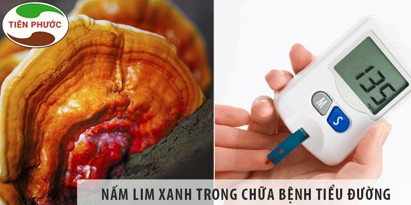 Nấm Lim Xanh Có Chữa Bệnh Tiểu đường được Không?