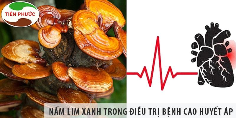 Tác Dụng Của Nấm Lim Xanh Trong Chữa Bệnh Cao Huyết áp