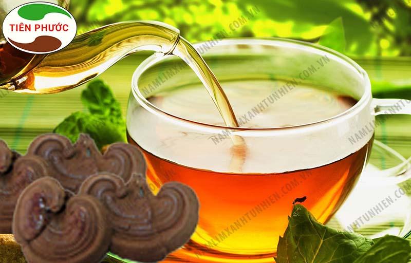 Có thể hãm trà nấm lim xanh để uống hàng ngày